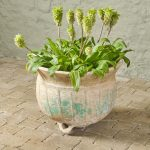 Small Ponne Planter-1